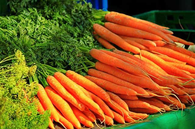 Морковь для сушки