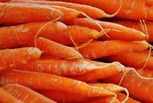 Рулеты из моркови